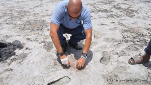 Nature Foundation Dry Salt Pond 1-001